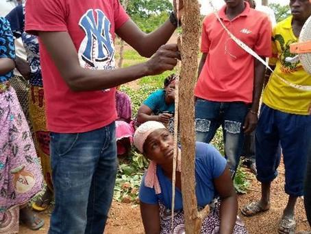 Le karité comme vecteur de transition écologique : l'ambition de la coopérative ASY au Burkina Faso