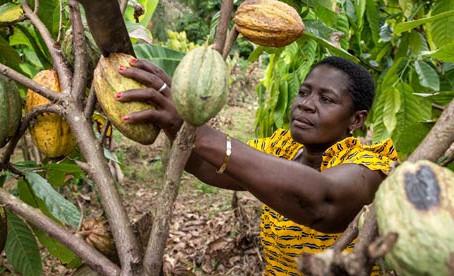 L'aventure continue pour le programme ÉQUITÉ Afrique de l'Ouest : Lancement de la phase 2