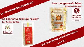 Burkina Faso : UPROMABIO diversifie ses partenariats avec Artisans du Monde et Les Jardins de Gaïa