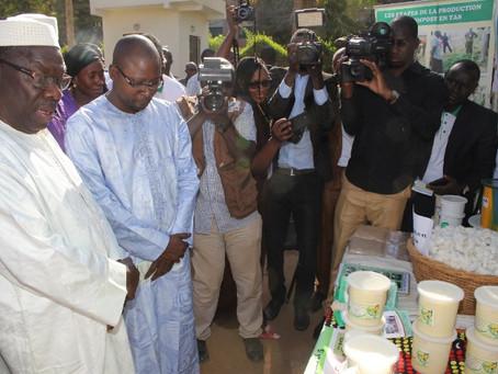 MALI : 1ère Journée Malienne du Commerce Equitable
