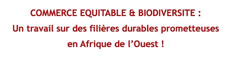Bannière.site.fr.png
