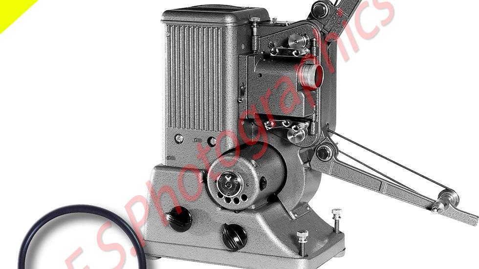 Specto 8mm Motor Belt