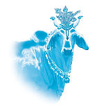 Blue cow copy.jpg