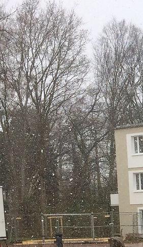 снег в марте.jpg