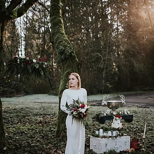 Sadie Winter Wonderland