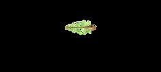 RLP2020 logo blk.png