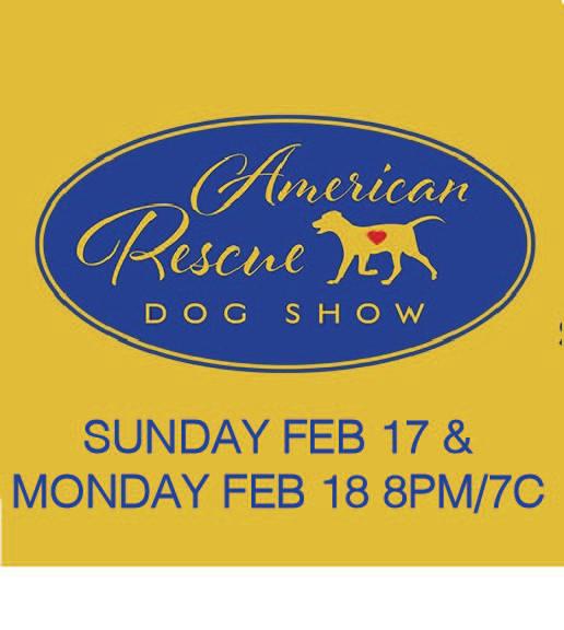 Hallmark Dog Show Press.jpg