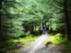 Mountain Bike Coaching - Lakelan  Mountain Guides
