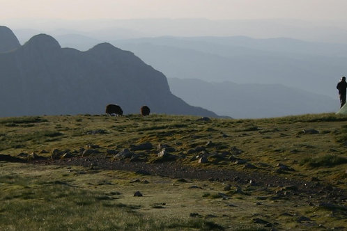 Wild Camping Experience I Lakeland Mountain Guides