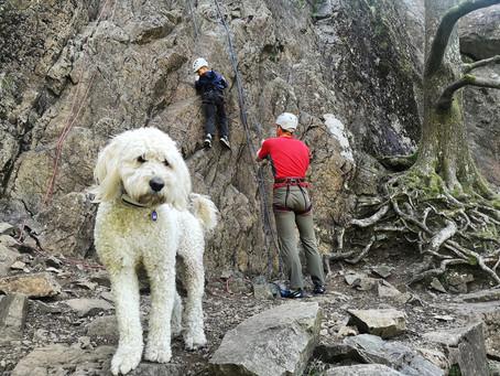 Rock climbing session