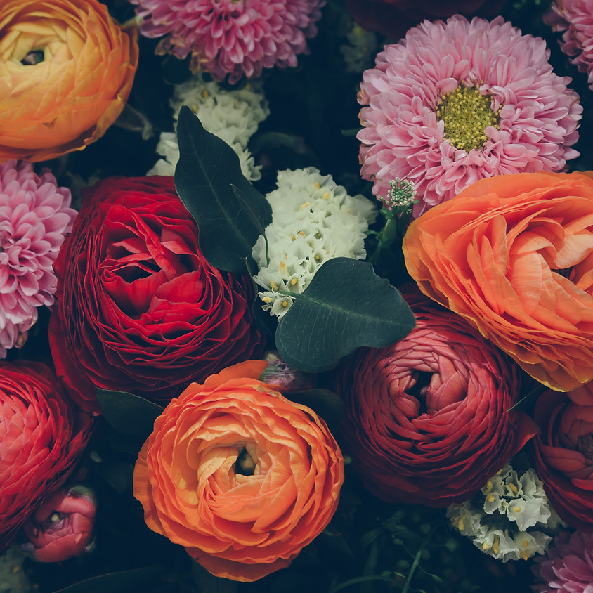 Practical Magic: The Language of Flowers
