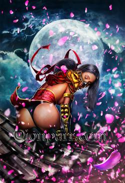 ninjagirl.r6_13x19_etsy