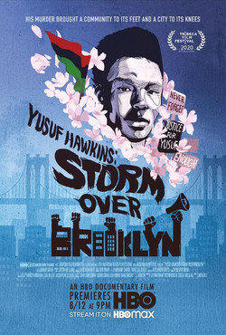 yusuf_hawkins_storm_over_brooklyn_xlg