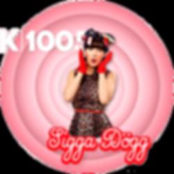 siggadogg-k100-stiker.png