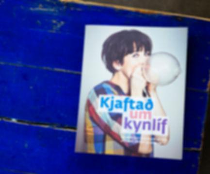 Chatting about sex (icel. Kjaftað um kynlíf), published 2014