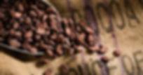 cacao bag.jpg