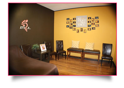 BabyFlix Ultrasound Room Fort Smith