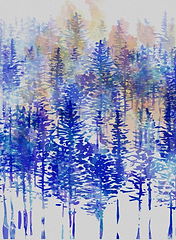 Trees in The Snow.png