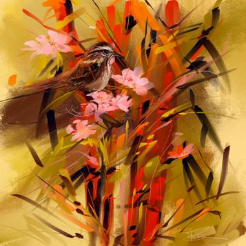 Wren and Bamboo