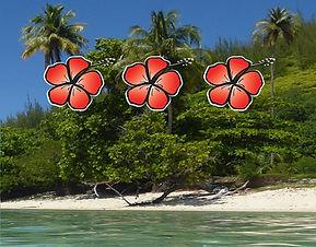forfait beach 3.jpg
