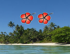 forfait beach 2.jpg