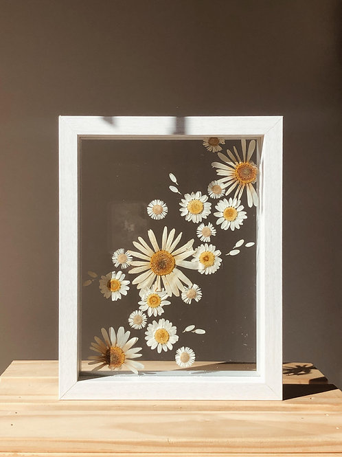 Dancing With Daisies