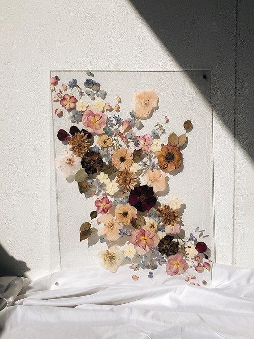 Wildflower Dream