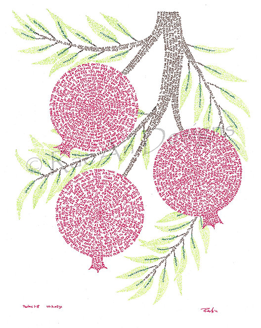Pomegranates I: Print