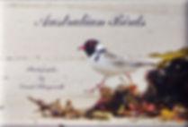 Australian BirdsA IGP0534.jpg