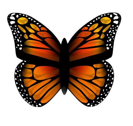 Papalote Mariposa