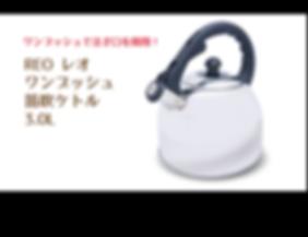 2019新規HP用-13.png