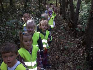 Op stap naar het bos