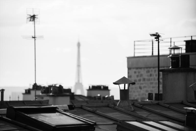 Vyhlídka na dámu, Paříž (2015)