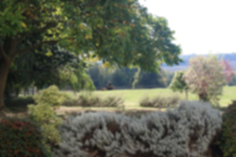 Belton House Autumn Gardens.JPG