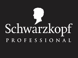 Logo SchwKopf.jfif