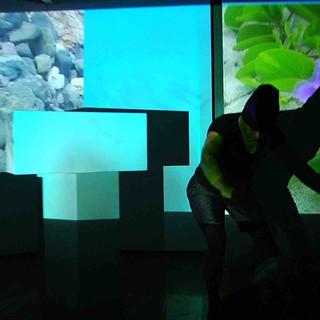 Habitat 2016 with Larry Asakawa