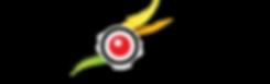 create emotion Logo (002).png