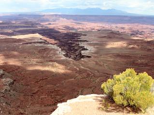 Canyonlands NP, Utah, USA