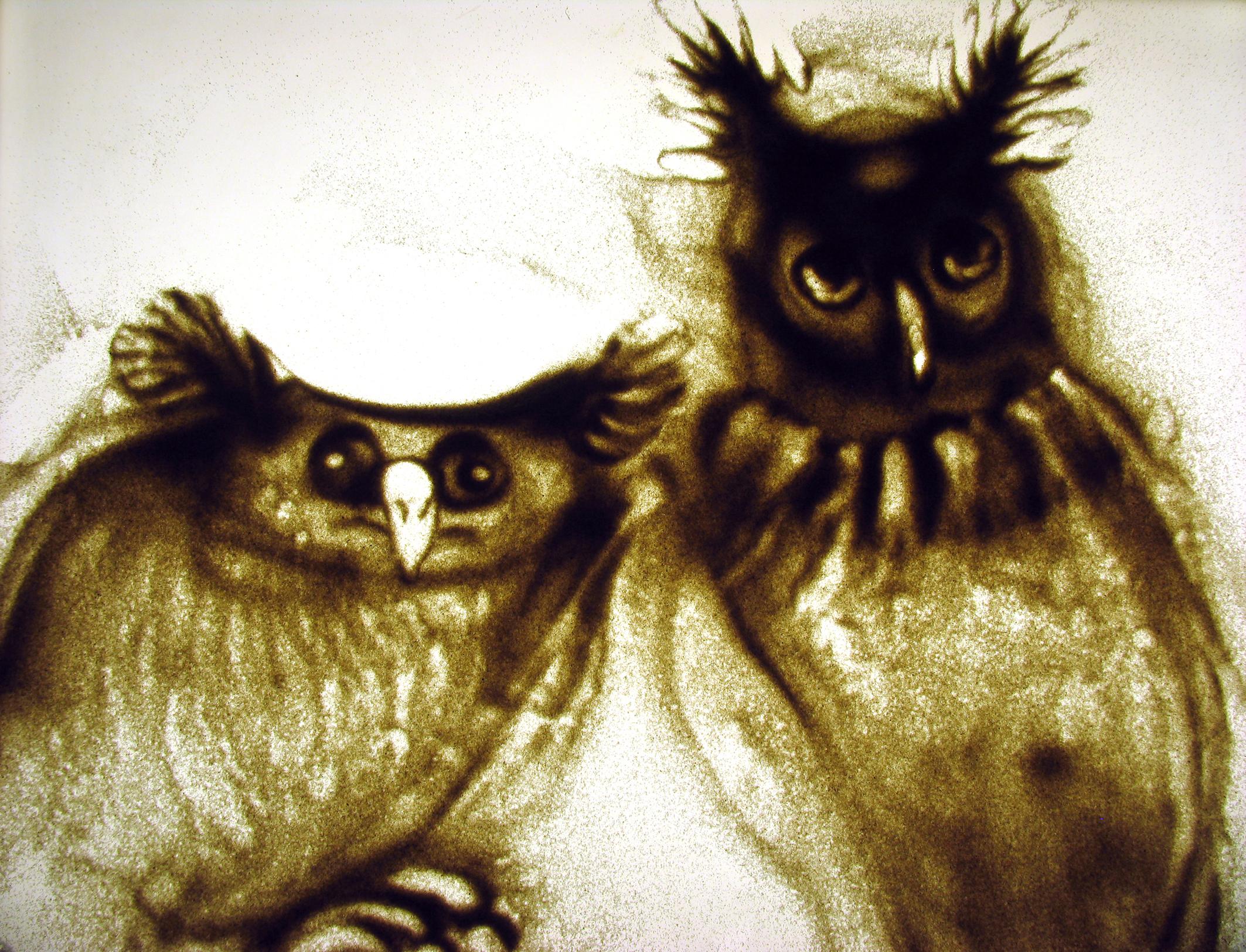 | owls | 2005
