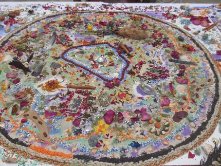 The Living Mandala