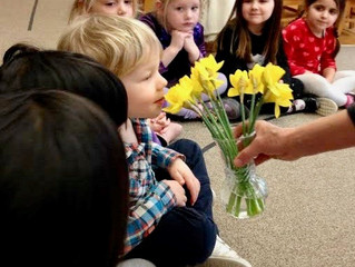 Preschool: The Parts of a Flower
