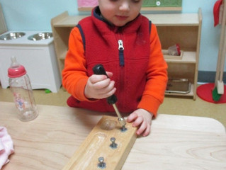 Seedlings:  Tools in the Classroom