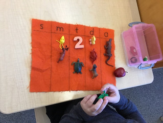 Pre-Primary: Beginning Sound Boxes…