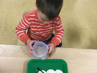 Seedlings: Building a Snowman