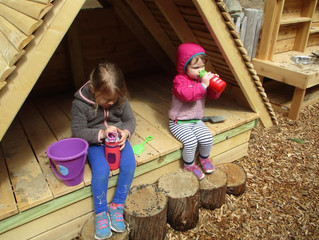 Seedlings: Our New Playground