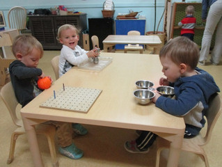 Seedlings:  Building Concentration