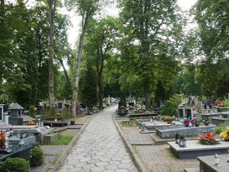 Cmentarz niezagrożony. Mieszkańcy decydują o przeznaczeniu działek.