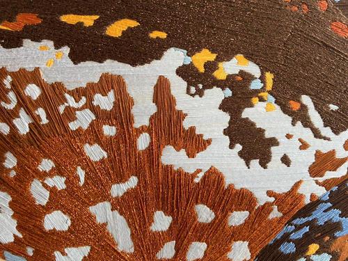Detail Chiriqui Harlequin Frog 2020
