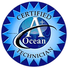 Ocean A+ Certified Saline Tattoo Removal