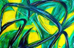 TR 5 - Amazon Colors